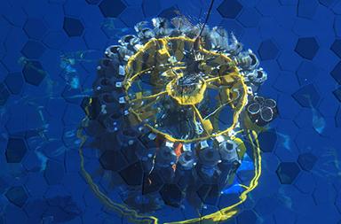 国际海洋质量控制数据库